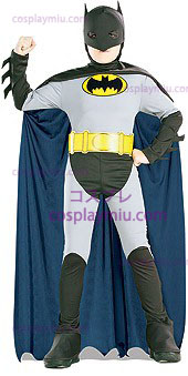 Animado Batman Costume