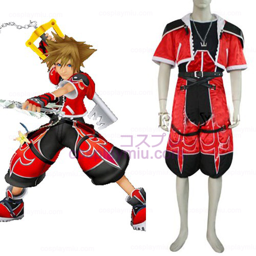 Kingdom Hearts 2 Sora Cosplay Admirável Forma