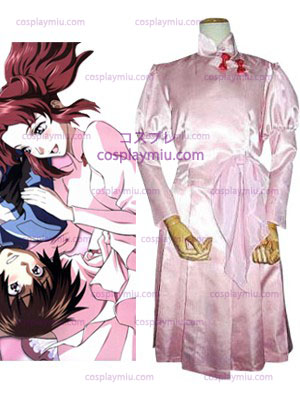 Mobile Suit Gundam SEED Flay Cosplay Allster